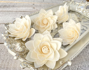 Sola Wood Flowers - Casablanca - Luv Sola Flowers
