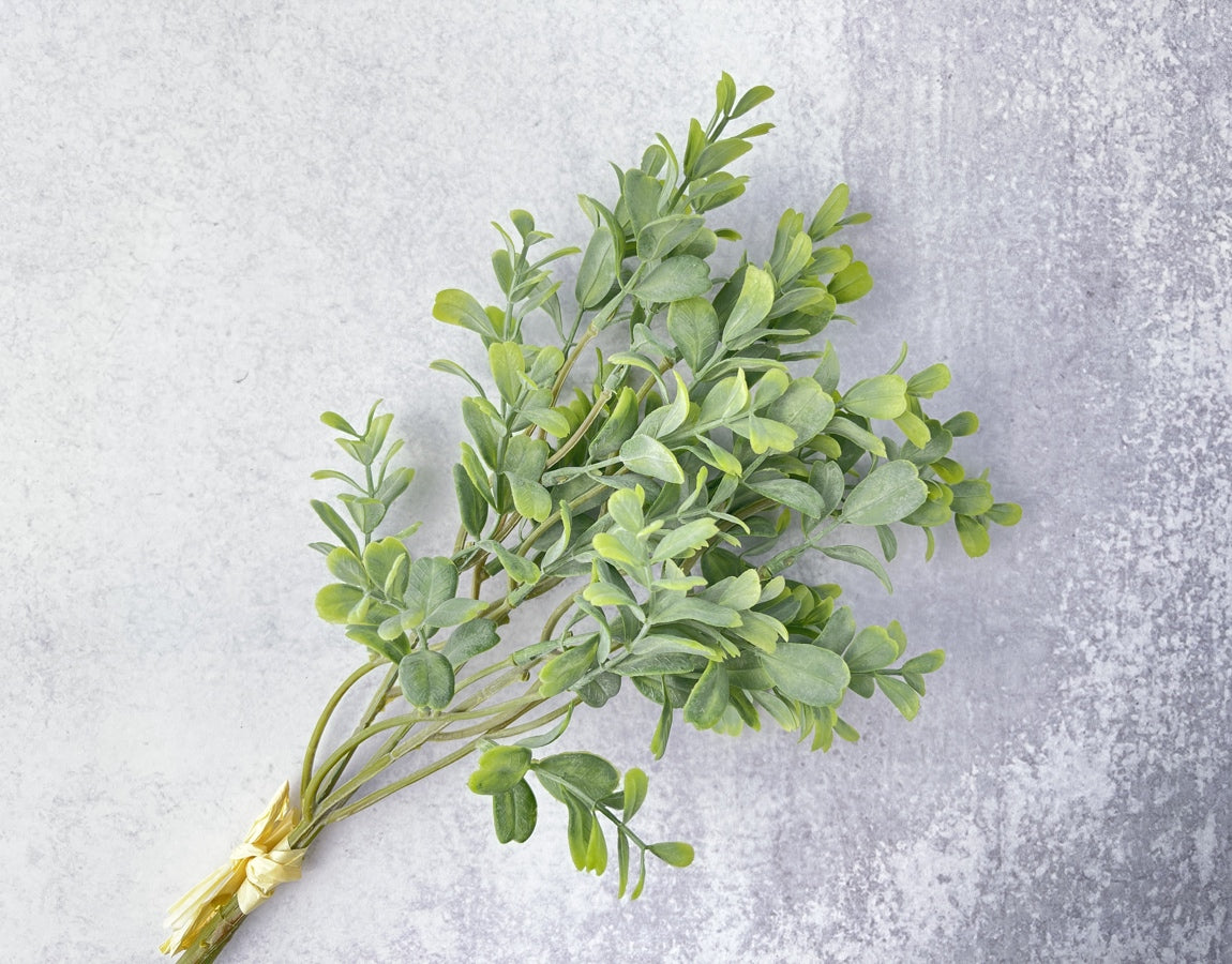 Frosted Boxwood Stems Faux - Luv Sola Flowers - Faux Filler