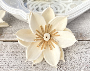 Sola Wood Flowers - Mona - Luv Sola Flowers