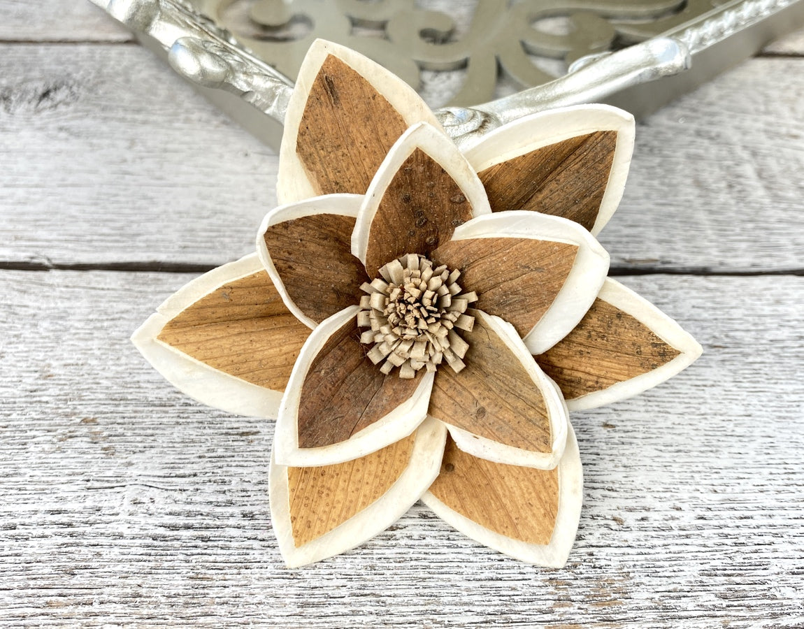 Sola Wood Flowers - Oliver - Luv Sola Flowers