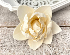 Sola Wood Flowers - White Pearl - Luv Sola Flowers
