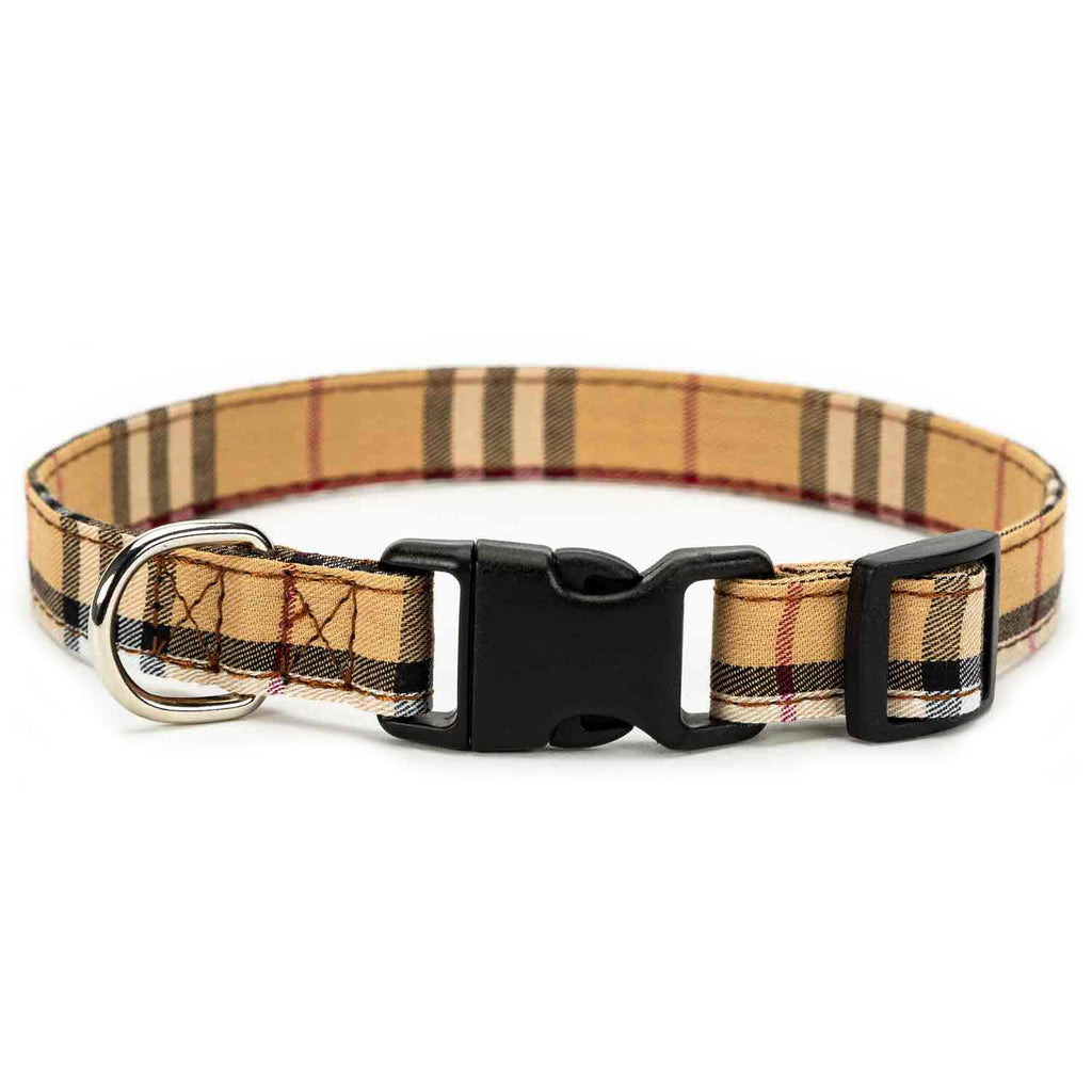 Limited Dog Collar