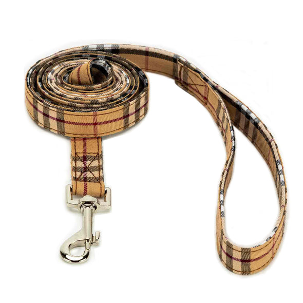 Limited Dog Leash
