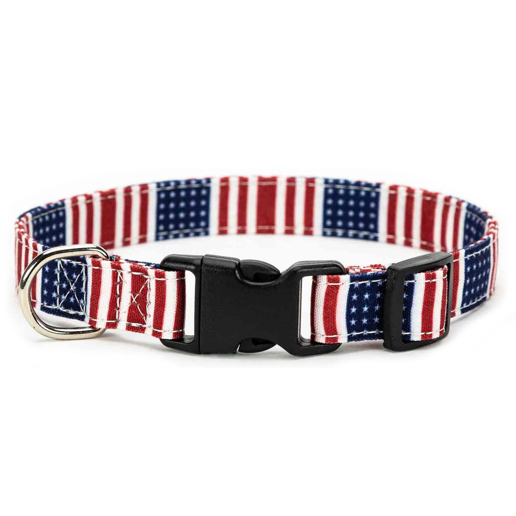 Patriot Dog Collar