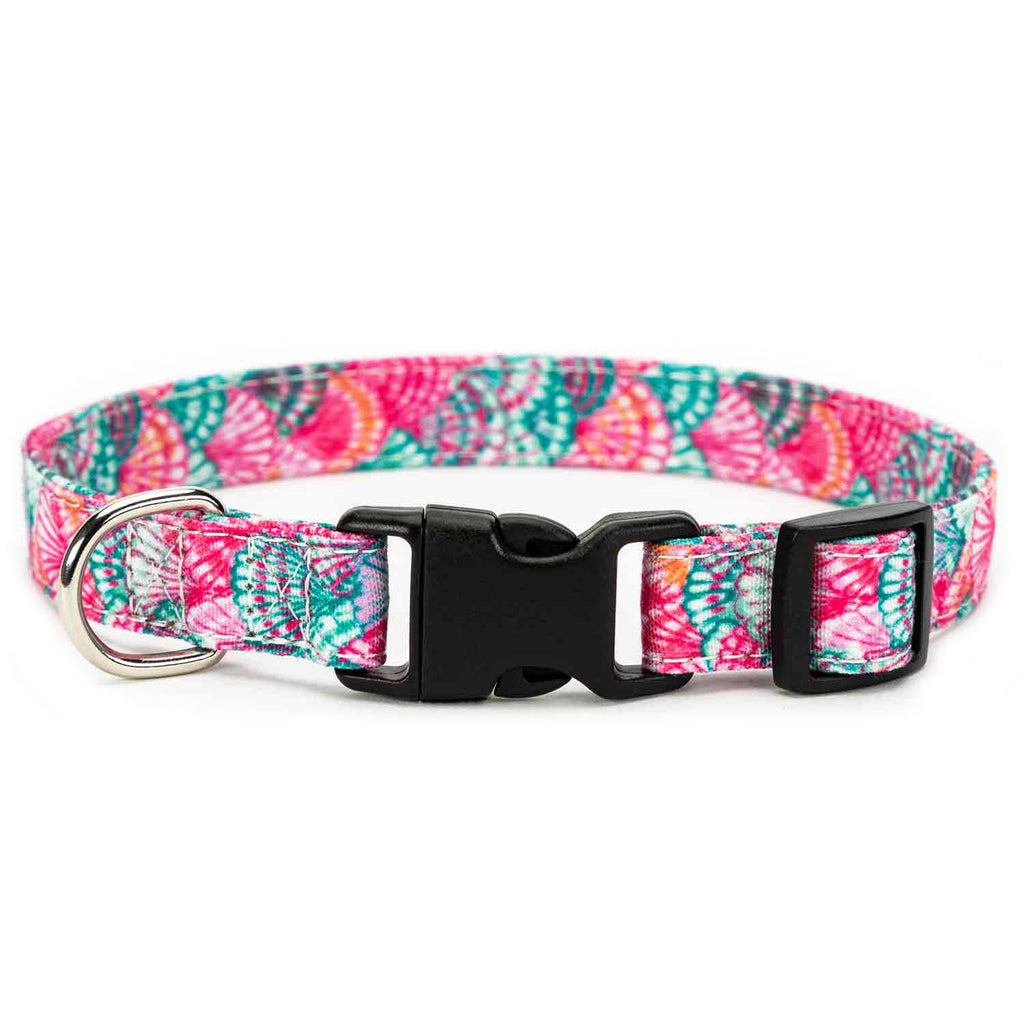 Pink Shell Collar, Bracelet & Leash Combo