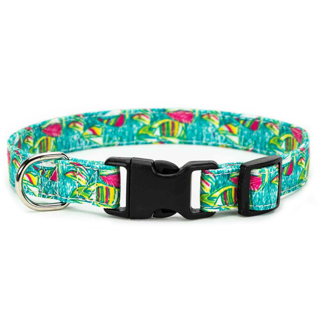 Sailboat Dog Collar