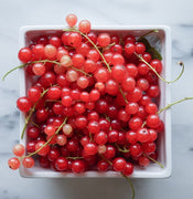 Red Currant Oil