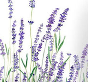 Soft Lavender Fragrance Oil