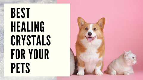 best healing crystals for your pets