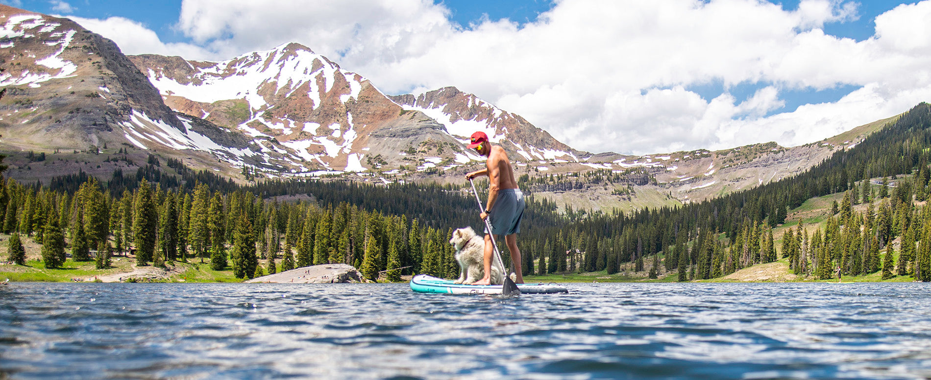 The Best Paddle Boards for Dogs 2021