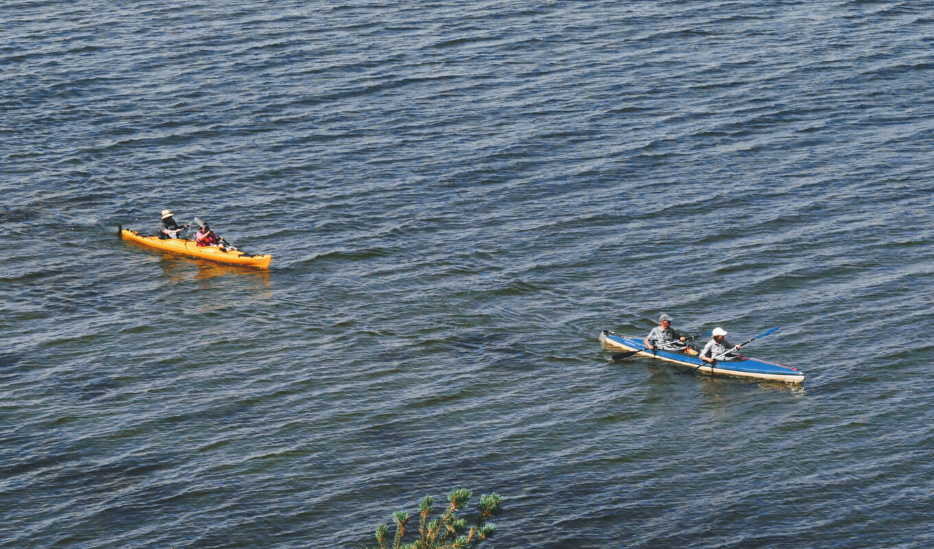 Two kayaks on body of water