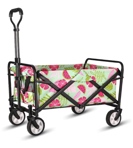 Best Budget Beach Wagons and Carts