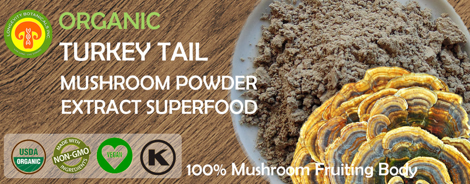 Organic Turkey Tail Mushroom Powder extract by Longevity Botanicals