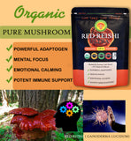 Organic Red Reishi (Ganoderma Lucidum) Mushroom Extract Powder OUT OF STOCK CANADA - COMING SOON