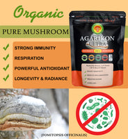 Agarikon( Fomitopsis) Mushroom Extract Powder * Regeneration*