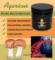 Agaricus Blazei Murill Mushroom Powder Extract 240 V- cap