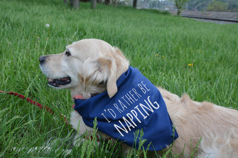 I'd Rather Be Napping - Dog Bandana - Navy - MoonlightMakers