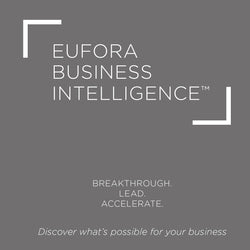 New! BUSINESS INTELLIGENCE Program