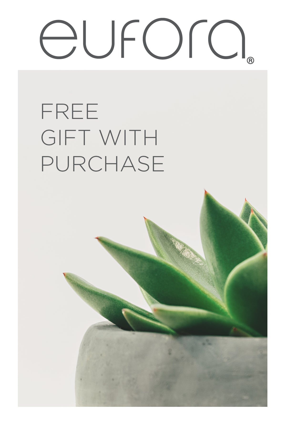 Free Gift display card