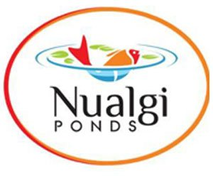 Nualgi Ponds Safe Pond Algaecide Alternative