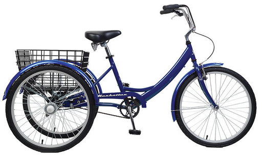 TRIKE 1 SPEED 89006005 BLUE