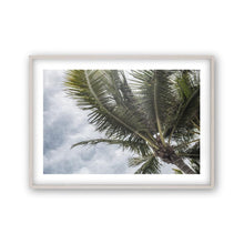 Load image into Gallery viewer, Palm Tree Print - Blim & Blum