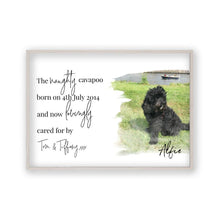 Personalised Pet Photo Print - Blim & Blum