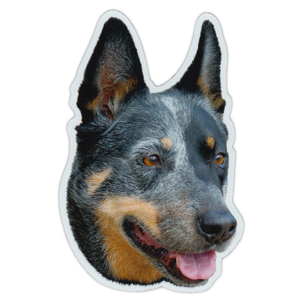 "Magnet - Australian Cattle Dog (3"" x 5"")"