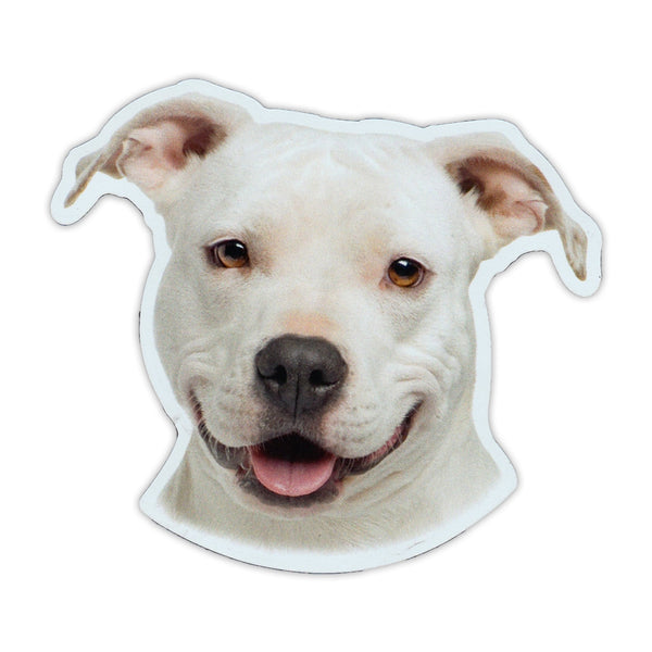 "Magnet - American Staffordshire Terrier (4.75"" x 4.25"")"
