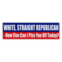Bumper Sticker - White, Straight, Republican - How Else Can I Piss You Off Today?