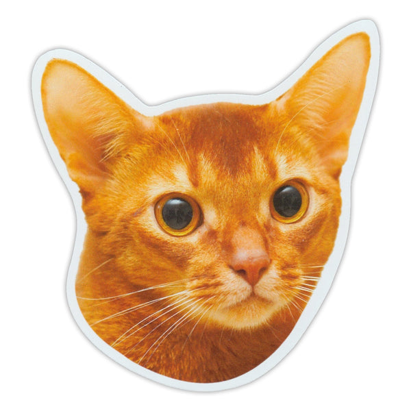 "Magnet - Abyssinian Cat Breed (5"" x 5.5"")"