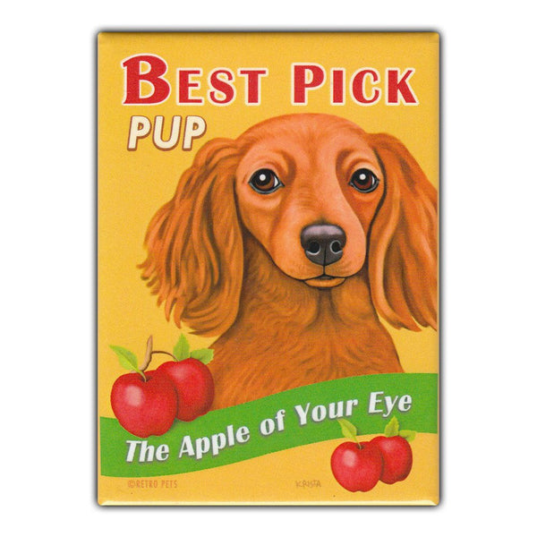 Refrigerator Magnet - Best Pick Pup, Apples, Dachshund