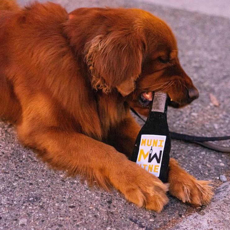 Muni Dog Wine