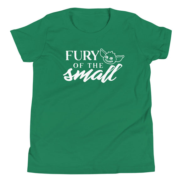 Fury of the Small Youth Shirt - Paola's Pixels