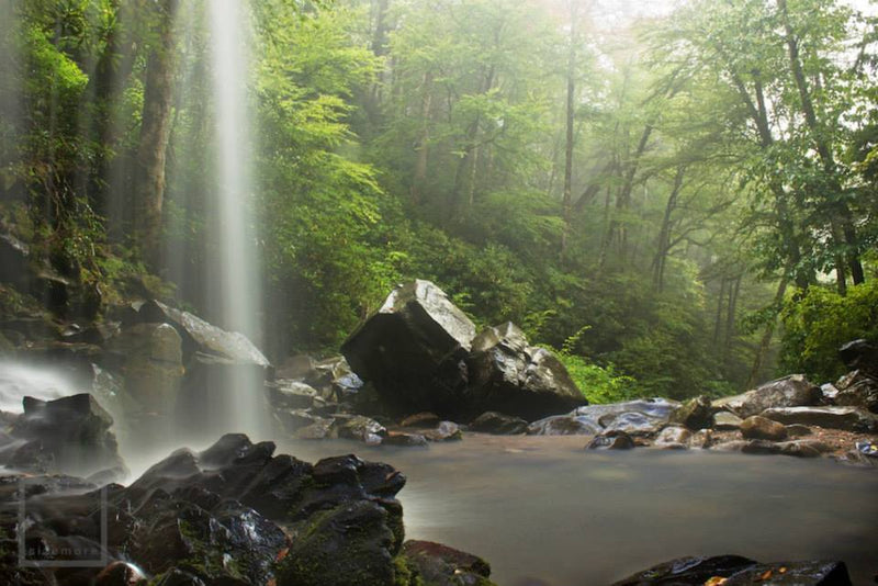 Great Smoky Mountains: Waterfalls & Abstracts