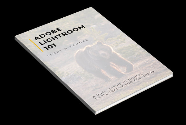 Adobe Lightroom 101 - eBook