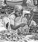 Markets of Chennai