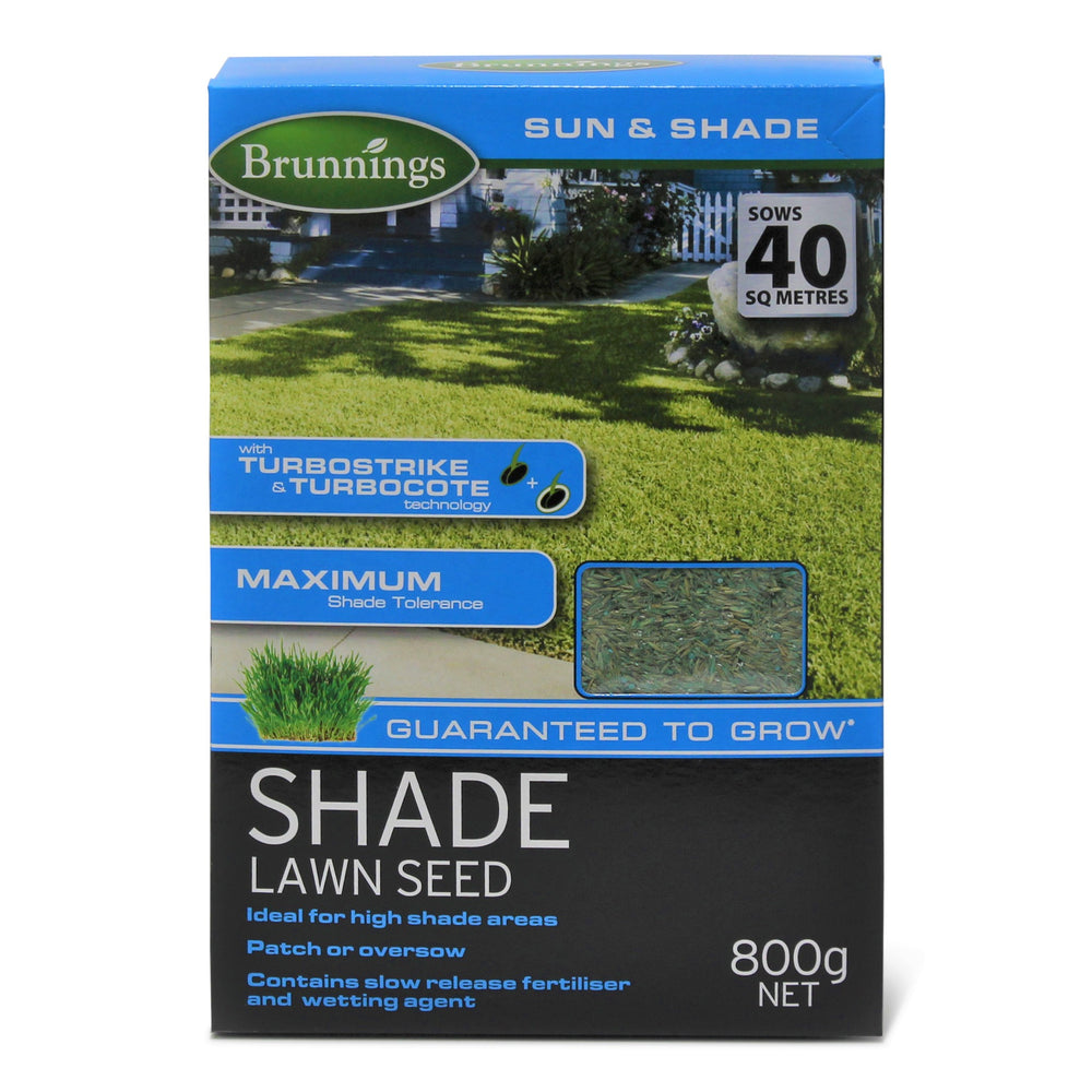 Shade Lawn Seed 800g