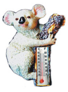 Koala Magnet With Thermometer