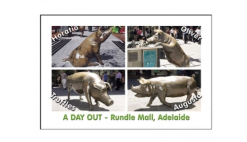 MAGNET A DAY OUT RUNDLE MALL pigs