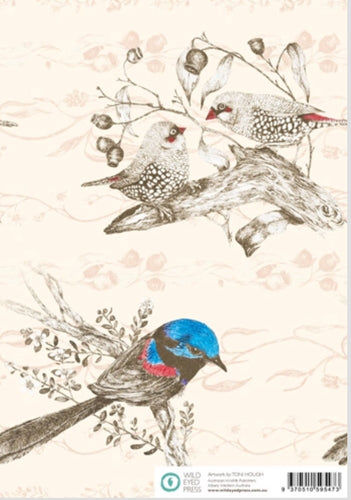 Finches and Wren Gift Wrap