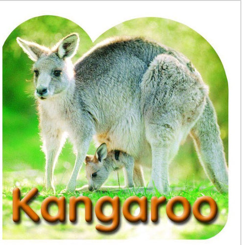 Kangaroo Board Book
