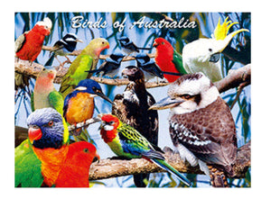Birds of Australia A3 Placemat