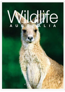 Wildlife Australia Mini Souvenir Book