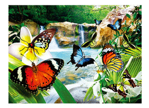 Butterflies of Australia A3 Placemat