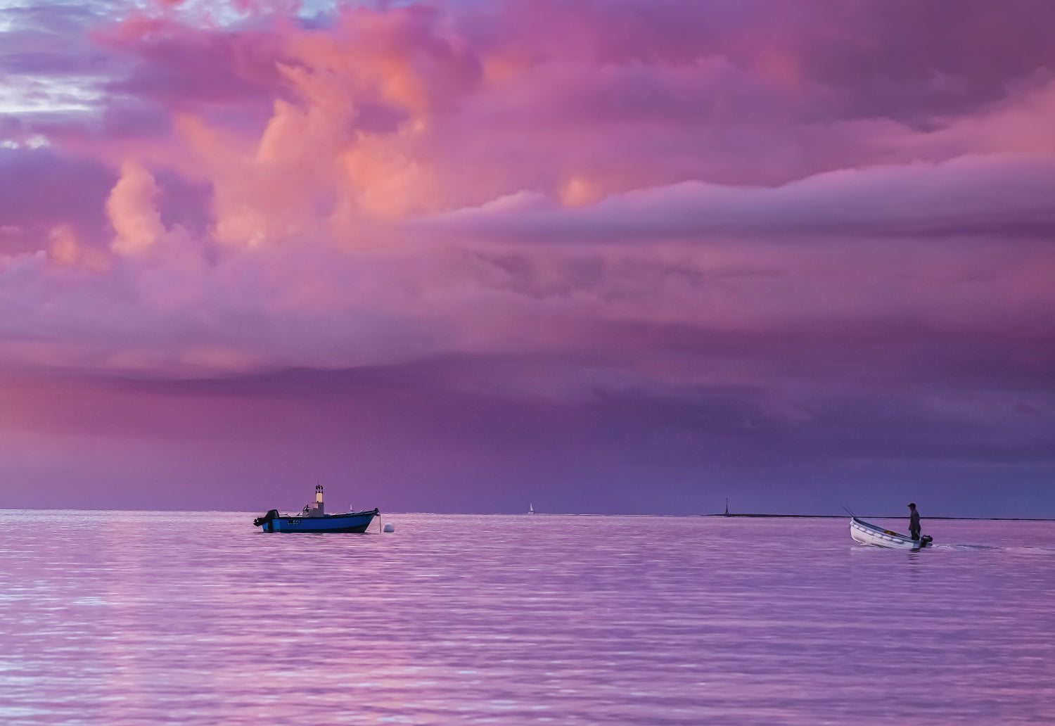 'Purple Dawn' Canvas Print