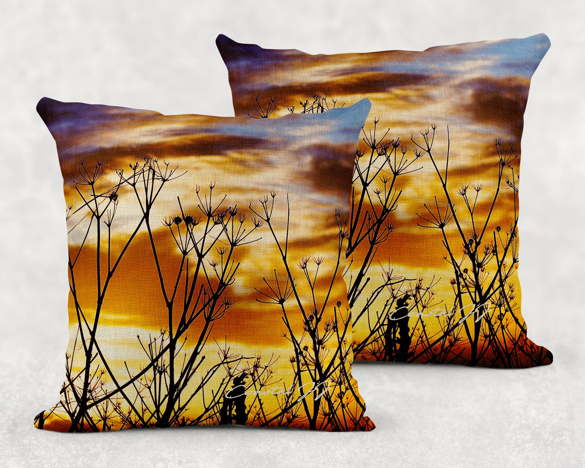 'Seashore Seed Heads on an Autumnal Evening' - Large Sofa Cushion