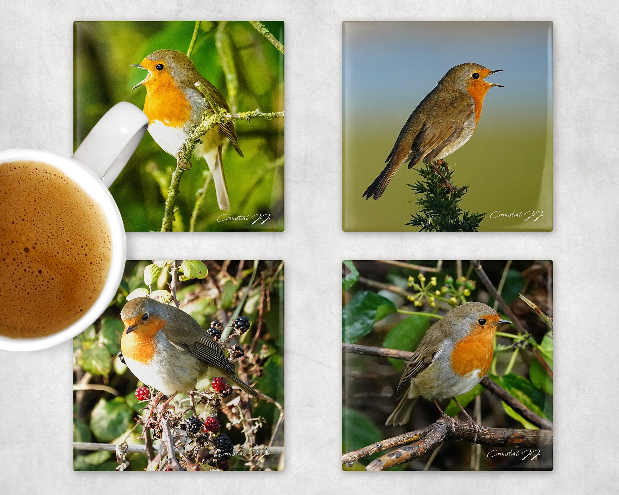 'Robin Redbreast' Coasters - Pack of 4