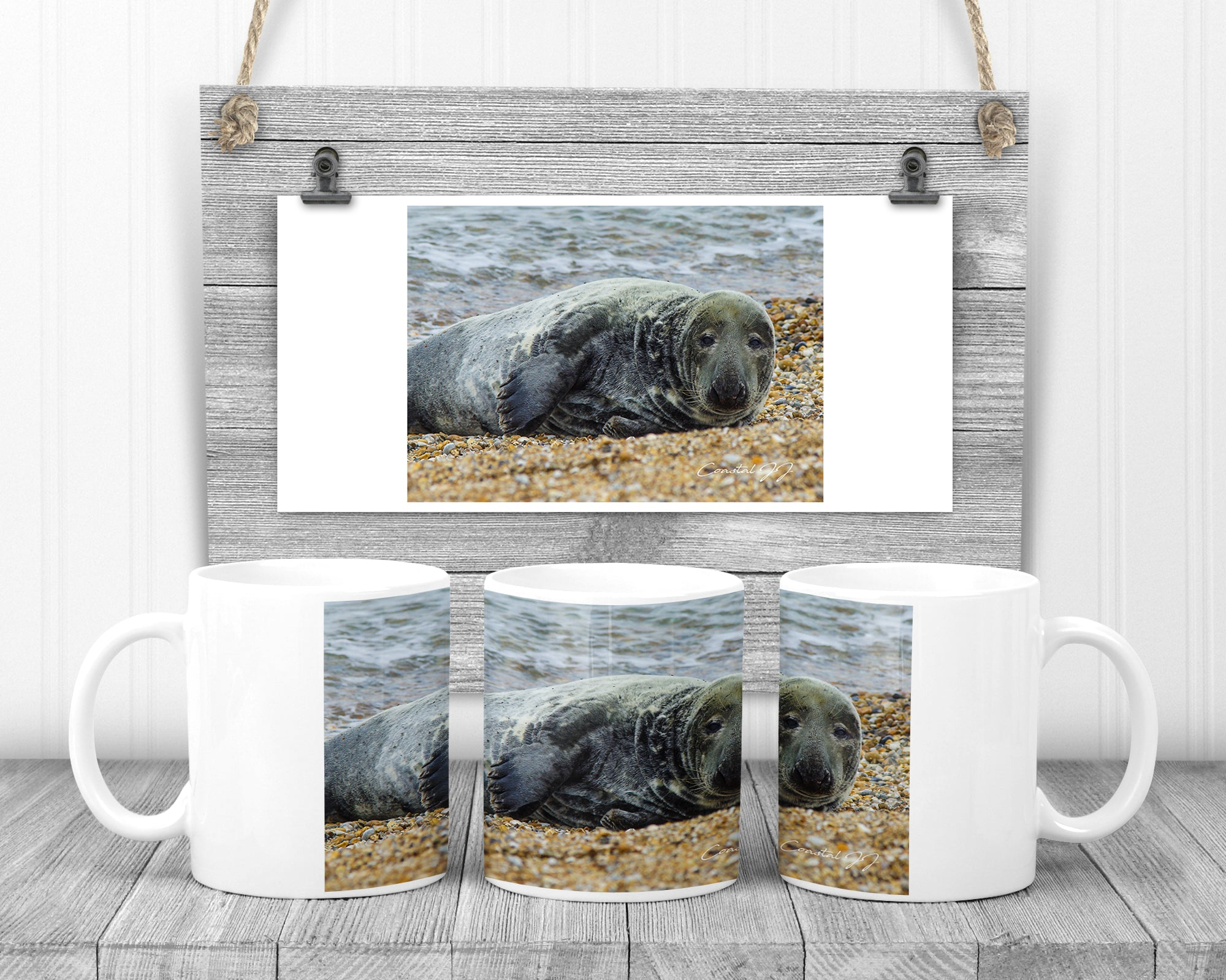 'Seal at Selsey' - 11oz Ceramic Mug