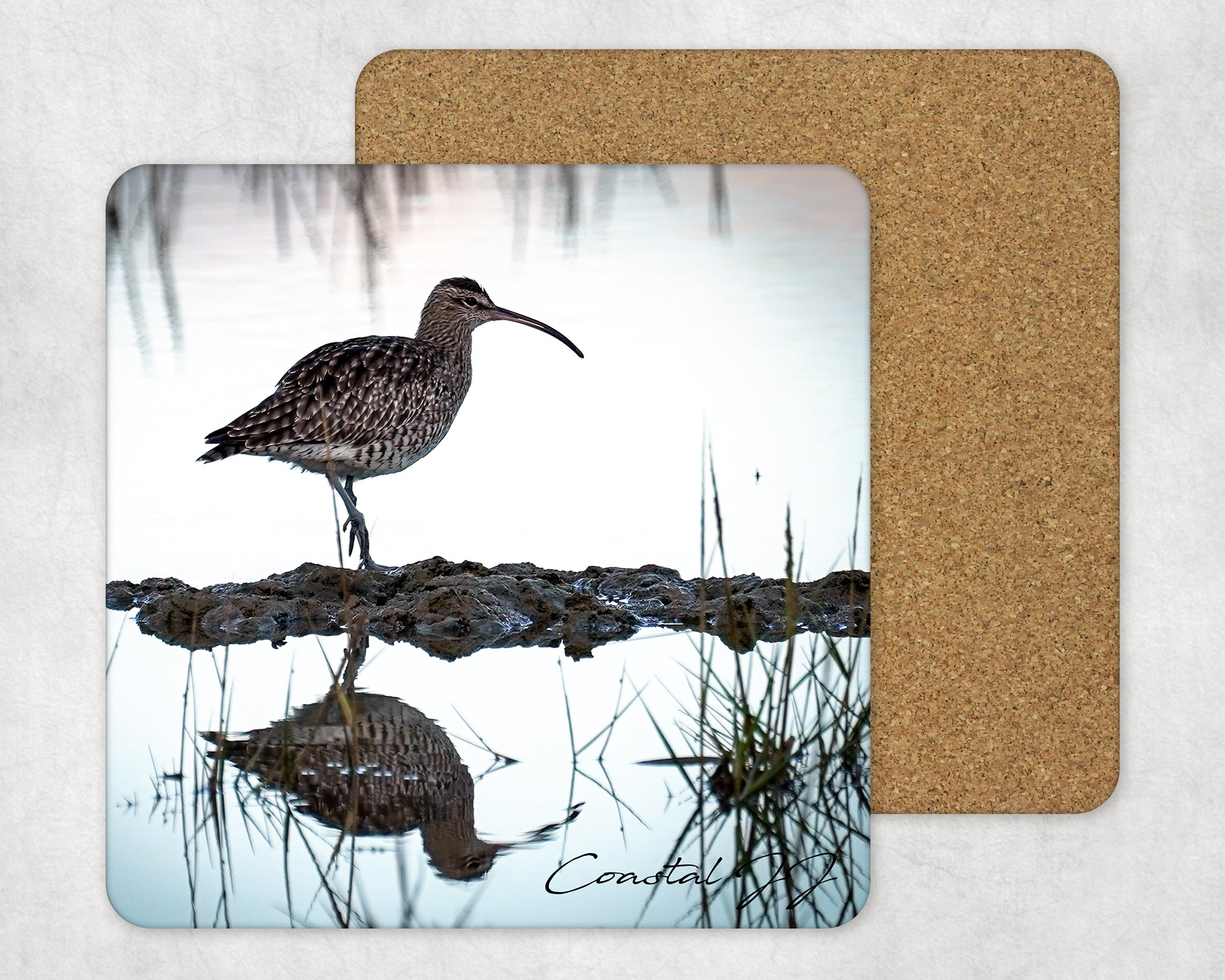 'Whimbrel at Dusk' -  Single Square Placemat